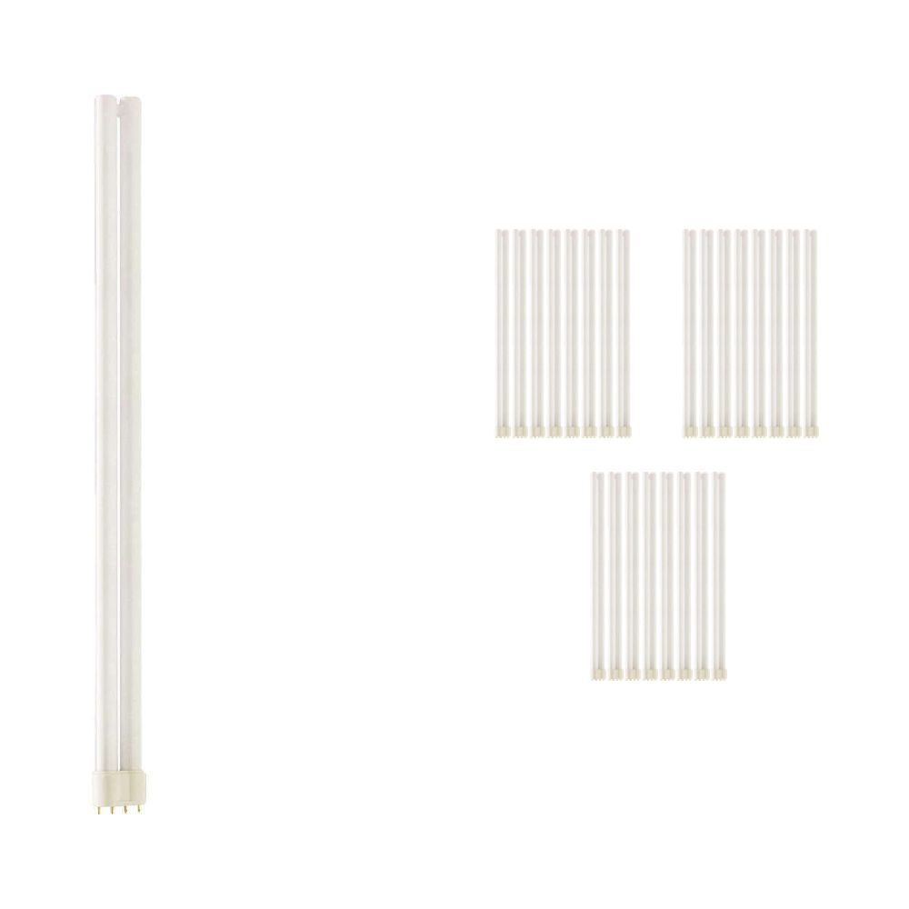 Multipack 25x Philips PL-L 55W 840 4P (MASTER) | Cool White - 4-Pin