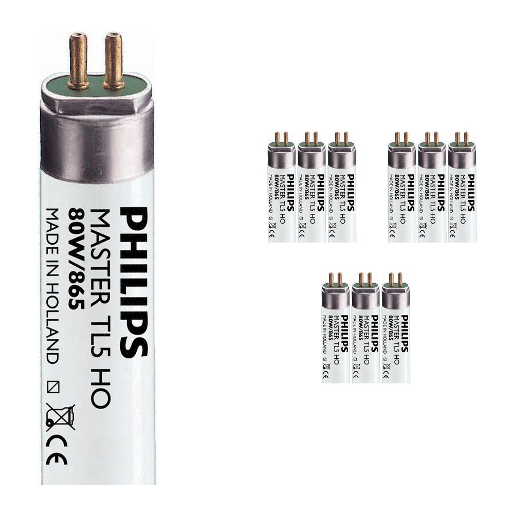 Multipack 10x Philips TL5 HO 80W 865 (MASTER)   145cm - Daylight